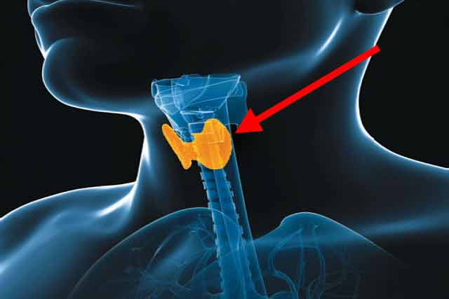 Tristețea și blocajele emoționale sunt principalele cauze ale bolilor tiroidiene!